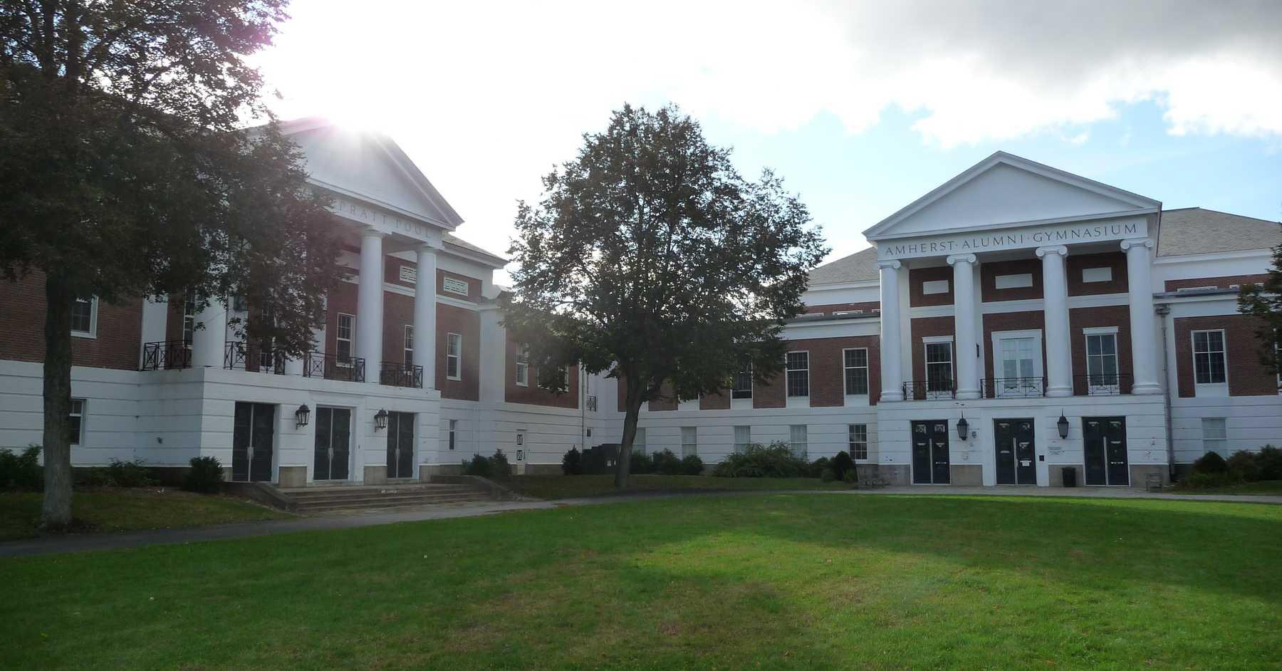 amherst college niche
