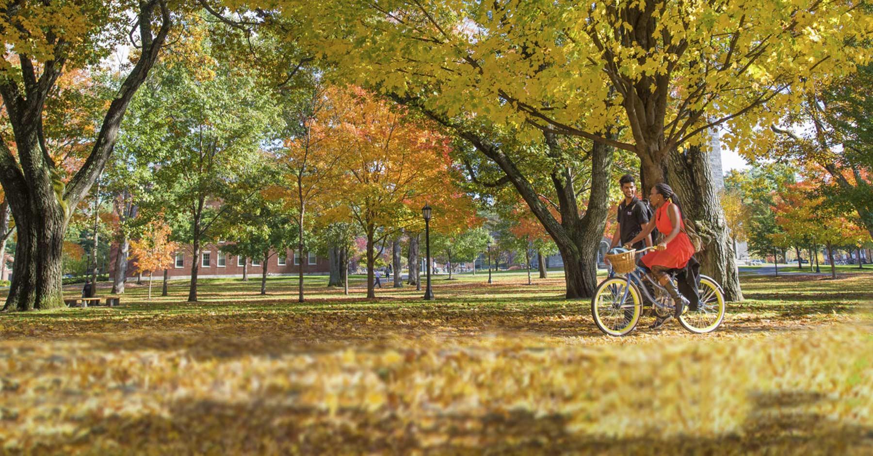 Bowdoin college niche sciox Image collections